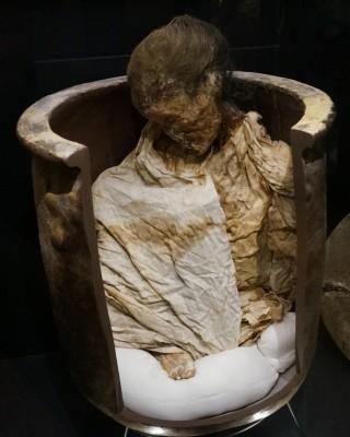 항아리 속에서 미라가 된 채로 발견된 고대 일본 여성 - 도쿄=이우상 기자 idol@donga.com 제공